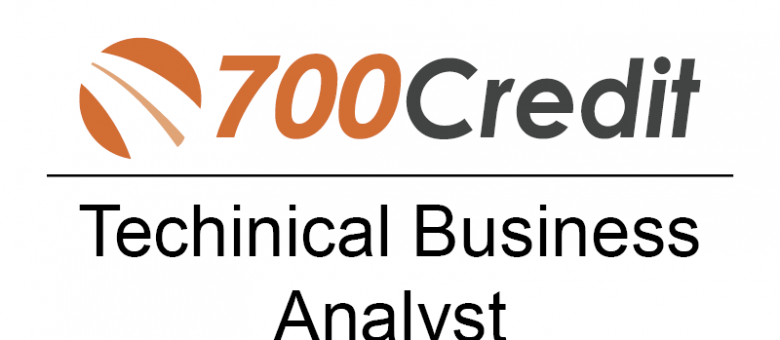 Technical Business Analyst